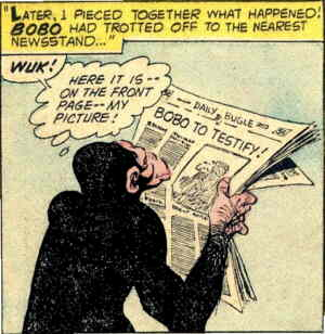 Bobo can both testify and, apparently, read! Artist: Carmine Infantino.