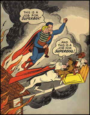 Krypto and Superboy take care of their respective business. Artists: Curt Swan and Stan Kaye.