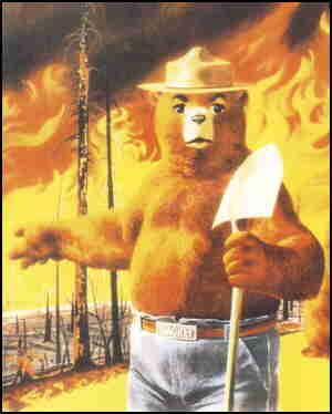 don markstein s toonopedia smokey bear