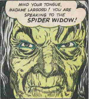 The Spider Widow. Artist: Frank Borth.